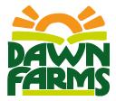 dawn copy